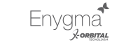 Logo enygma cinza